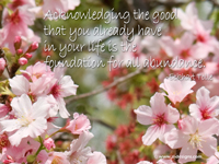 Acknowledging the good that you already have in your life is the foundation for all abundance. -Eckhart Tolle