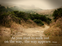 As you start to walk out on the way, the way appears - Rumi